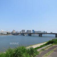 目の前の堤防からの眺望
