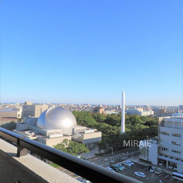 サーパス宮崎駅東 11階