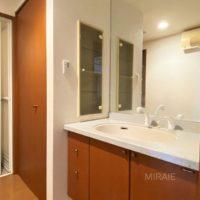 鏡が大きくて使いやすい洗面化粧台。左の戸の付いた所は洗濯機置き場です。